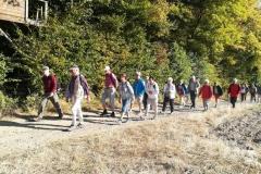 319. Wanderung am 15.09.2018, Rodder Maar und Königsses (112)