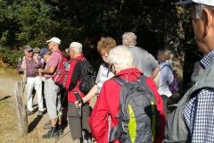 319. Wanderung am 15.09.2018, Rodder Maar und Königsses (122)