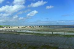 dbwv-ostfriesland2014-09